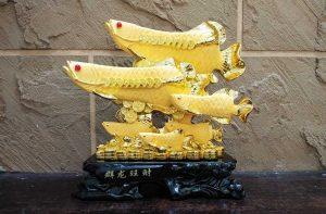 ปลามังกรมงคล
